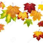 Congés d'automne (Toussaint)